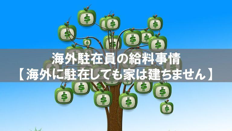 salary_expat